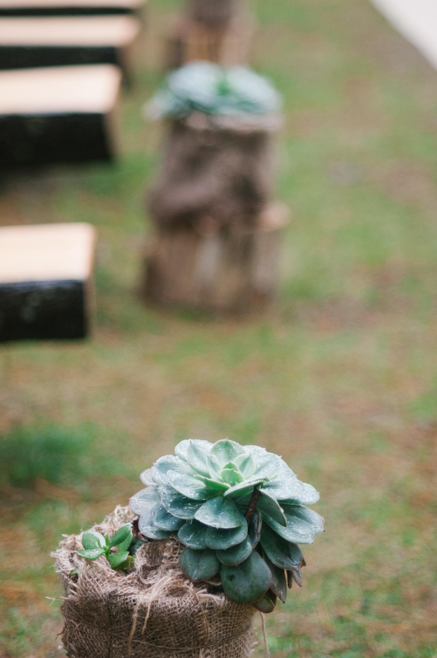 Lindsay-Nick-bilpin-pine-forrest-nsw-wedding-76