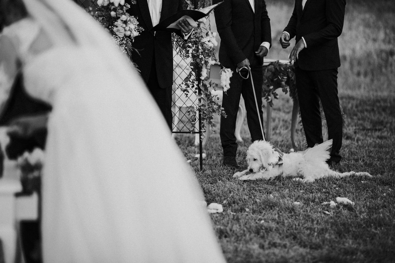 Lyndal-luke-camden-farm-burnham-grove-wedding-89