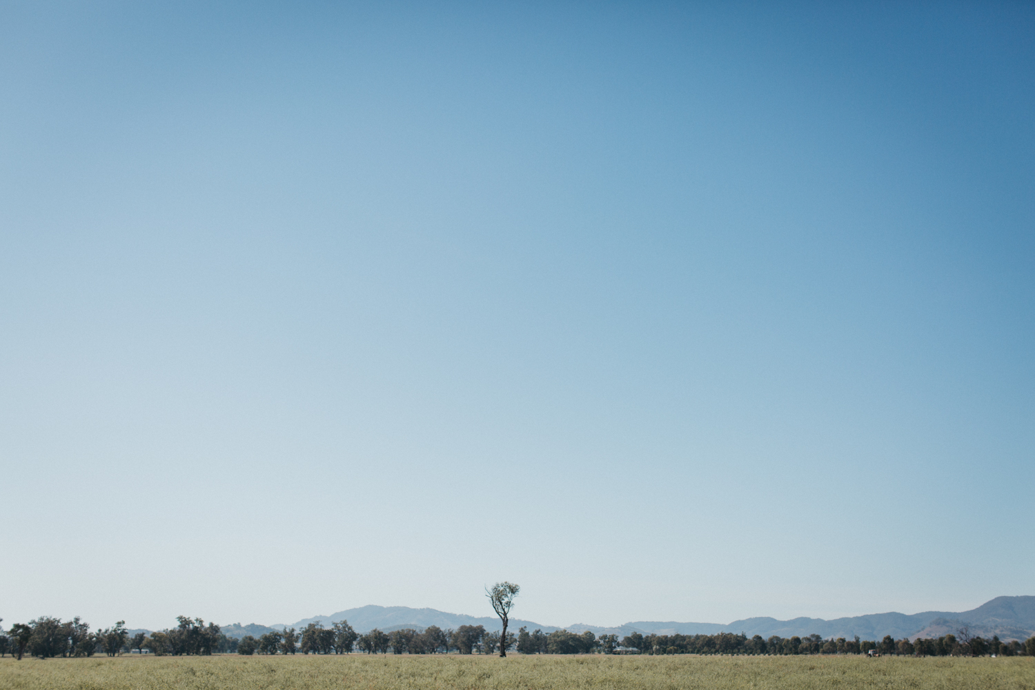 Mudgee Wedding of Mel and Nathan at the Vinegrove