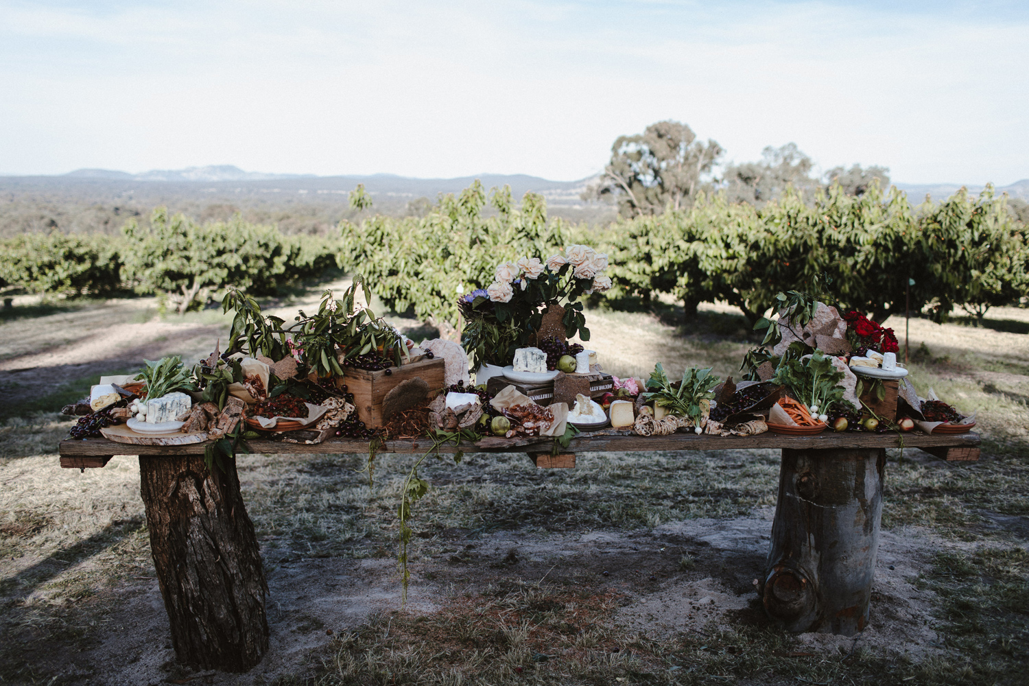 112-diy-australian-albury-farm-wedding-lisa-lasanka